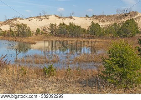 Wetland Pond Amidst The Dunes In Indiana Dunes National Park In Indiana
