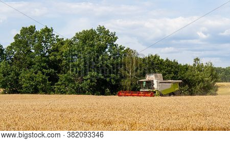 Combine Harvester Harvests Ripe Gold Wheat In Field, Against Forest And Blue Sky With Clouds Backgro