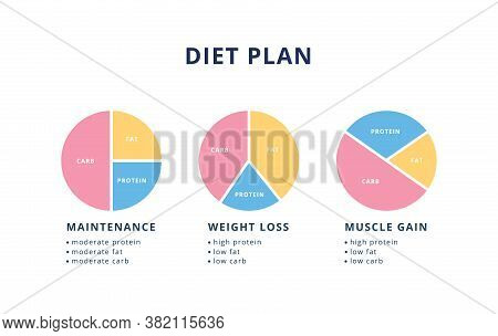 Diet Plan Set For Health And Nutrition - Pie Chart Set For Weight Loss And Gain