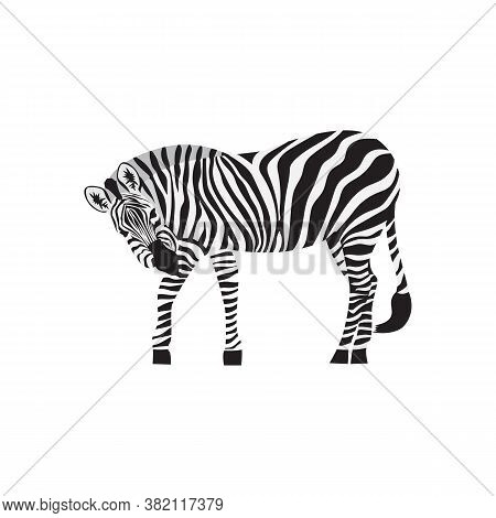 Black And White Zebra Icon Or Symbol, Vector Illustration Isolated On White.
