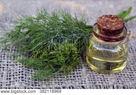 Dill Essential Oil In A Glass Bottle And  Fresh Dill Herb Bunch On Old Wooden Table.anethum Graveole