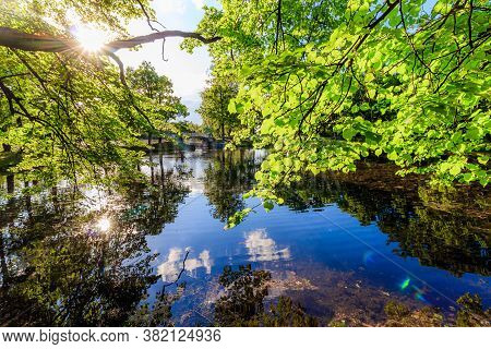 Summer Evening In The Park With A Lake. Summer Landscape. Nature Of Russia. Well-maintained Park. Ev