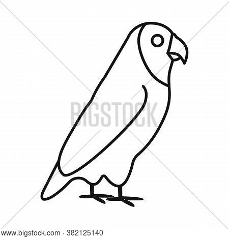 Vector Design Of Parrot And Green Icon. Set Of Parrot And Brazilian Stock Vector Illustration.