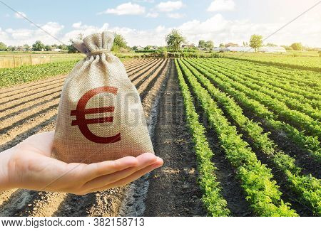 Hand Holds Out A Euro Y Bag On A Background Of A Carrot Plantation. Support And Subsidies. Lending F