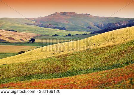 Summer landscape of Tuscany landscape, Italy