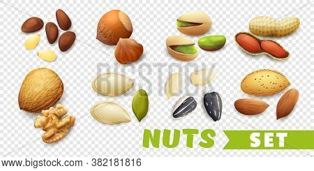 Realistic Nuts Set With Walnut Seeds Pistachio Almond Peanut Isolated On Transparent Background Vect