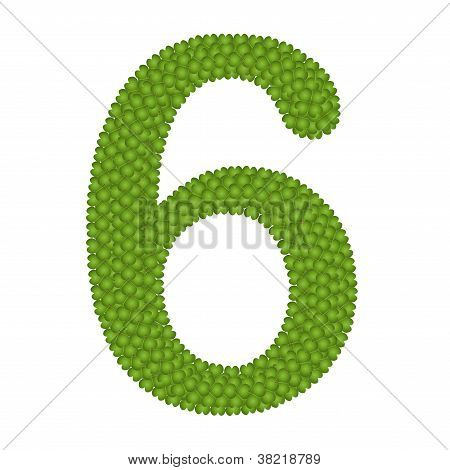 Four Leaf Clover Of Alphabet Numbers 6