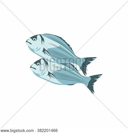 Sea Bass, Commercial Fish Species. Bream Or Crucian Carp Seafood. Restaurant Menu Or Fish Market Des