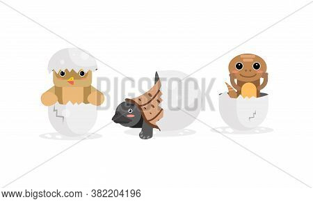 Cute Birds And Reptile Hatching From Egg Vector Set
