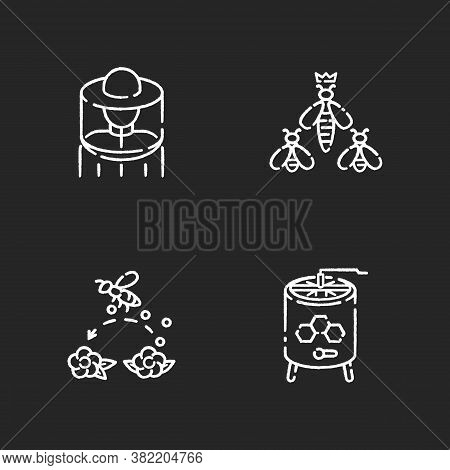 Beekeeping Business Chalk White Icons Set On Black Background. Beekeeper Suit, Queen Bee, Pollinatio