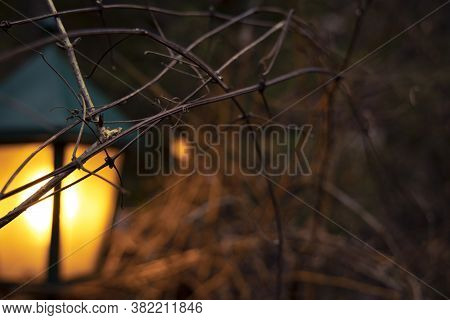 Unfocused Concept Of Lantern Illumination Outdoor Concept Picture With Bare Garden Branches In Autum