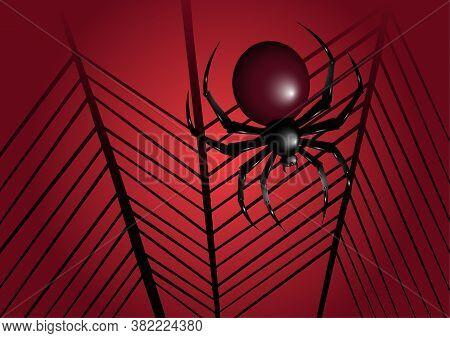 Halloween Spider Illustration. Spider Background. Halloween Web And Spider Illustration.