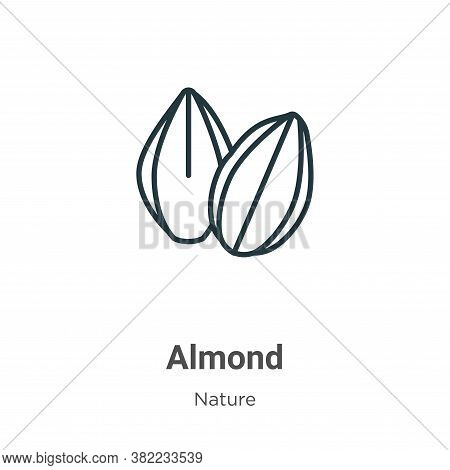 Almond icon isolated on white background from nature collection. Almond icon trendy and modern Almon