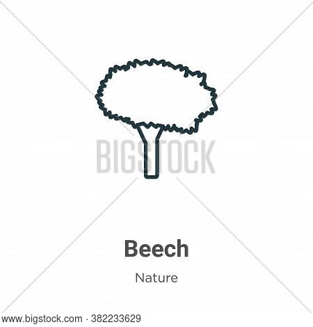 Beech Icon From Nature Collection Isolated On White Background.