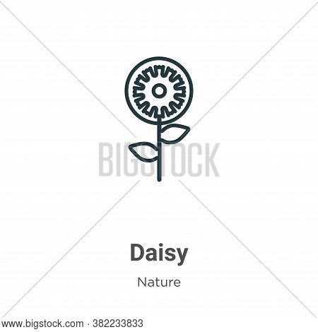 Daisy icon isolated on white background from nature collection. Daisy icon trendy and modern Daisy s