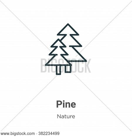 Pine icon isolated on white background from nature collection. Pine icon trendy and modern Pine symb
