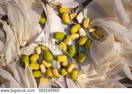 Indian Lotus Seeds Or Nelumbo Nucifera Seeds On Lotus Petals