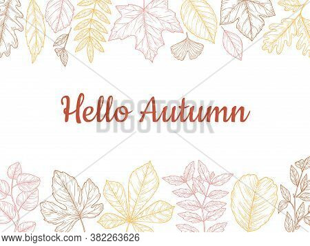 Sketch Autumn Leaves Background. Fall Leaf Banner, Colorful Drawing Foliage. Forest Nature Of Novemb