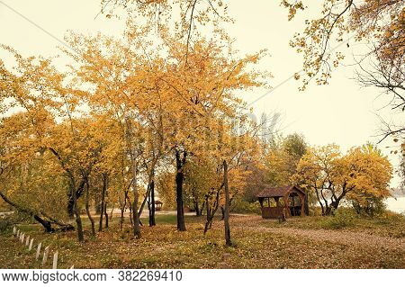 Place Of Magic. Urban Park In Fall. Park Landscape In Autumn. Trees Change Color In Park. Autumn Par
