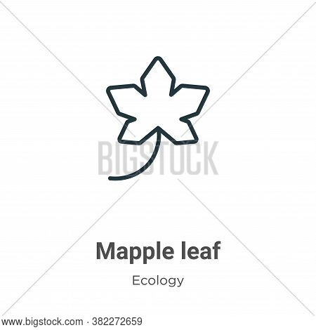 Mapple leaf icon isolated on white background from ecology collection. Mapple leaf icon trendy and m