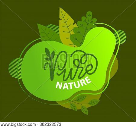 Pure Nature Green Sign With Tree Leaves And Handwritten Lettering Logo Ecological Concept. Healthy L