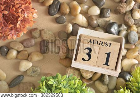 August 31, Appointment Design In Natural Concept With Number Cube.