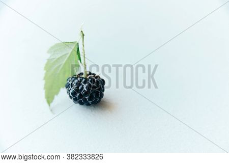 Black Whole Raw Ripe Blackberry With Green Leaf On White Paper, Close-up Horizontal Stock Photo Imag
