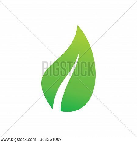 Leaf Icon Vector. Leaf Icon Isolated On White Background. Leaf Icon Simple And Modern. Leaf Icon Vec