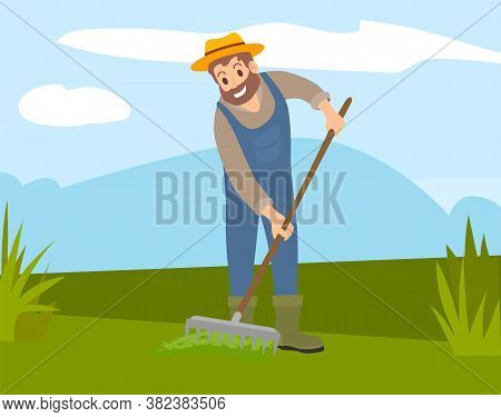 Bearded Farmer In Hat And Overalls Rakes The Grass In Field. Cultivation, Harvesting, Working On Fre