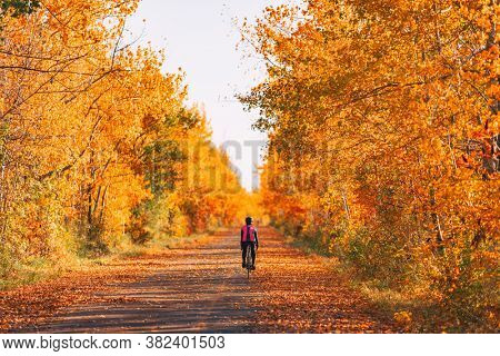 Bike cyclist biking in fall forest with beautiful scenery of red foliage autumn leaves. Cycling on road trip.