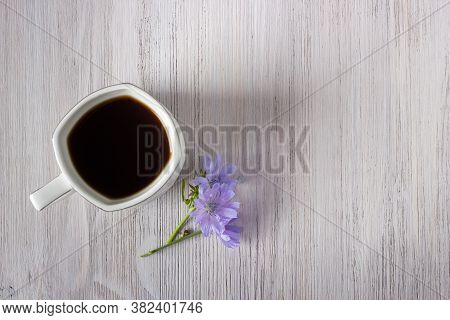 White Cup Of Chicory Drink Or Coffee With Chicory Flowers On A White Wooden Background. Healthy Food