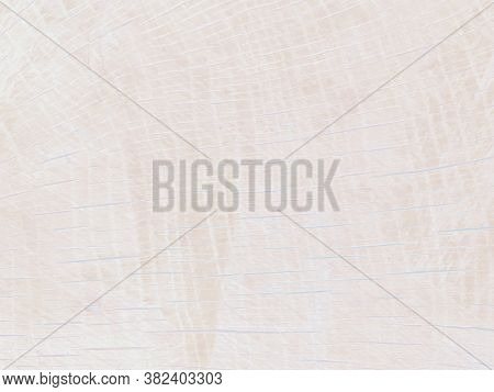 Gently Pink Background, Texture Of Natural Wood, Saw Cut Wood