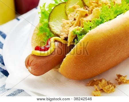 Close Up Of A Hot Dog With Lettuce, Gherkin, Fried Onions, Ketchup And Mustard