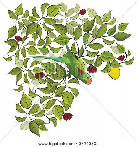 Parrot And Tree