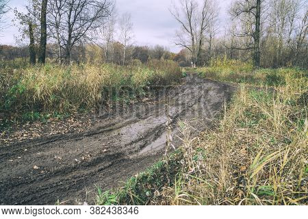 An Impassable Road, Off-road Track In Autumn Forest.