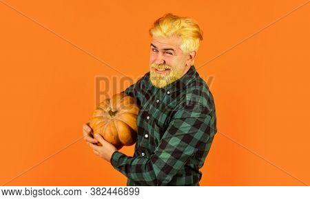 Eat Healthy. Organic Farming. Family Farm. Farmer Carry Big Pumpkin. Man Bearded Rustic Farmer Prese
