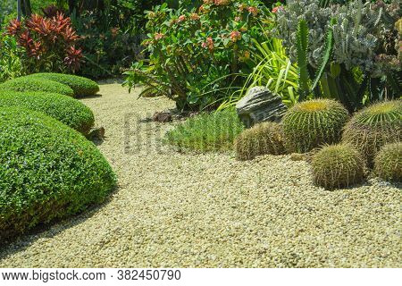 Beautiful Small Gravel Garden, Decorated With Light Brown Pebble In The Middle, Brown Stone, Cactus,