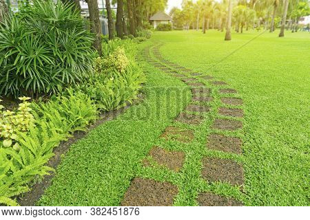 Curve Pattern Of Laterite Steping Stone On A Fresh Green Grass Smooth Lawn In The Public Park, Lady