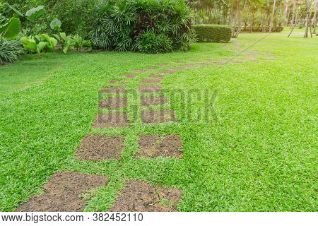 Curve Pattern Walkway Of Square Laterite Steping Stone On Fresh Green Grass Yard, Smooth Carpet Lawn