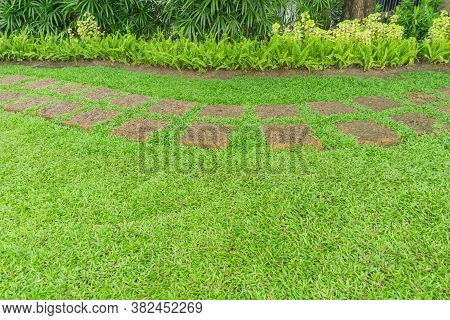 The Walkway Pattern Of Square Laterite Steping Stone On Fresh Green Grass Yard, Smooth Carpet Lawn A
