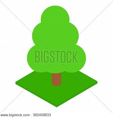 Tall Tree Icon. Isometric Illustration Of Tall Tree Vector Icon For Web