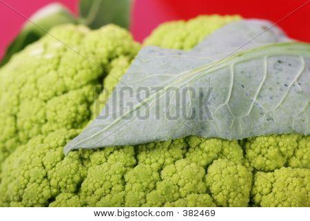 Broccoflower_leaf