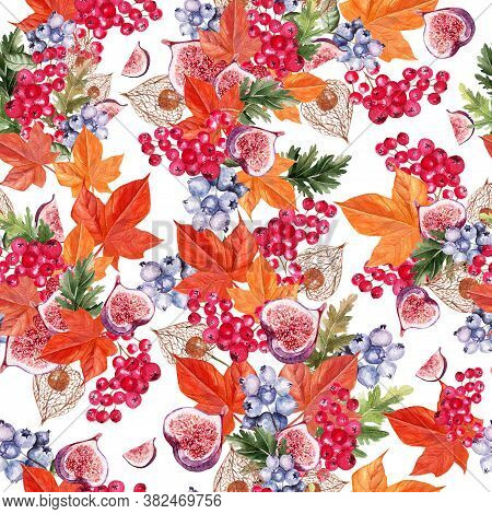 Beautiful Autumn Watercolor Pattern With Leaves, Blueberries, Viburnum Berries, Physales And Figs. I