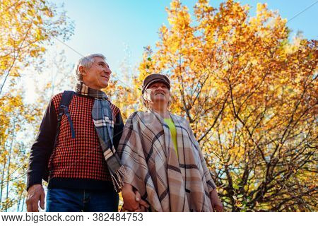 Fall Season Walk. Senior Family Couple Walking In Autumn Park. Man And Woman Spending Time Together