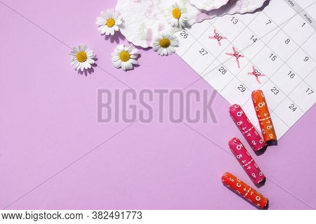 Menstrual Pads And Tampons On Menstruation Period Calendar With Chamomiles On Pink Background. The C