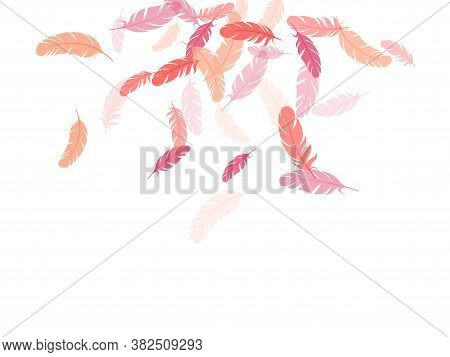 Trendy Pink Flamingo Feathers Vector Background. Plumage Trendy Fashion Shower Decor. Easy Plumelet