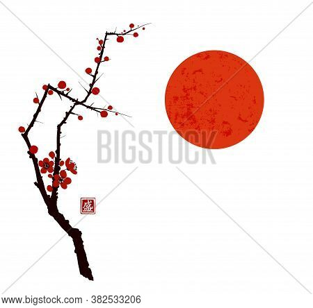 Sakura Cherry Tree Blossom And Big Red Sun On White Background. Traditional Oriental Ink Painting Su