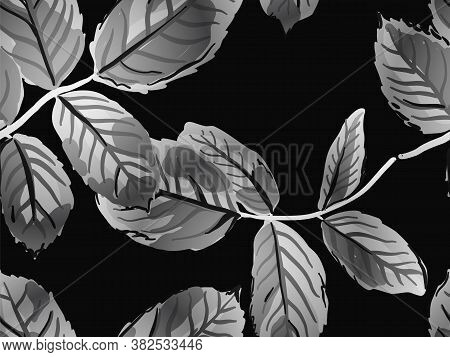 Monochrome And Greyscale Summer Textile Design. Repeated Spring Peony Wallpaper. Painted English Ros