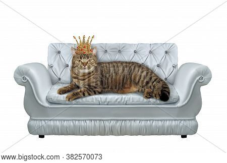 The Beige Cat In A Gold Crown Is Lying On A Stylish Gray Leather Divan. White Background. Isolated.