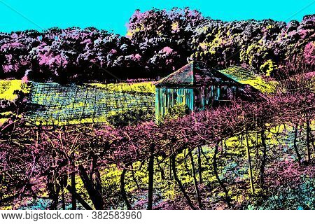 Rural Landscape With Old Farmhouse Amidst Vineyards Near Bento Gonçalves. A Friendly Countryside To